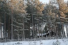 Финские каникулы-09